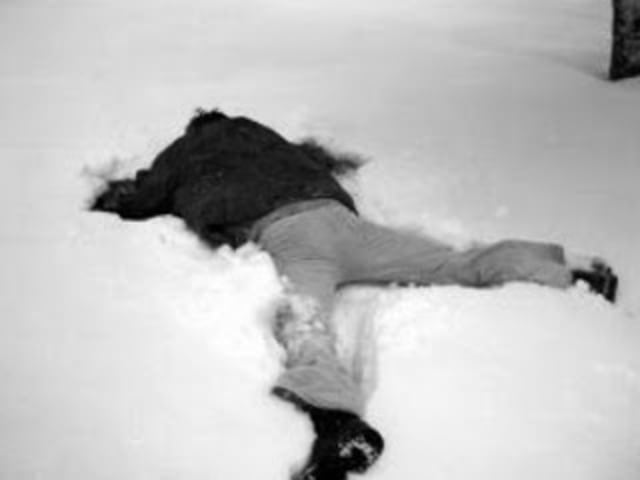 "Eskimos have millions of words for ""snow"", Sopranos have a similar quantity for ""kill"". Here's a picture of a dead eskimo in the snow, enjoy"