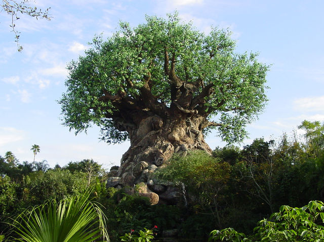 How Well Do You Know Disney S Animal Kingdom Playbuzz