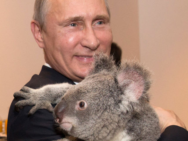 Which US Presidential Candidate does Putin love the most?