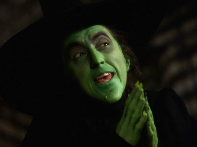 What did the Wicked Witch write in the sky?