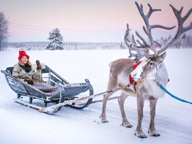 Pick an activity to do with your pet reindeer: