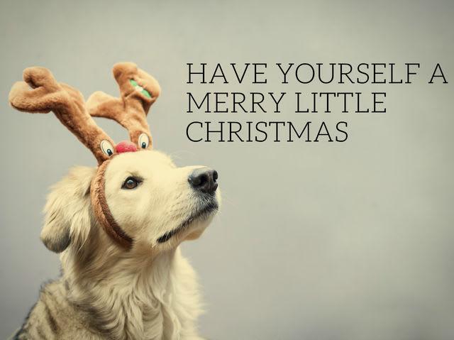 How Well Do You Know Classic Christmas Carol Lyrics? | Playbuzz