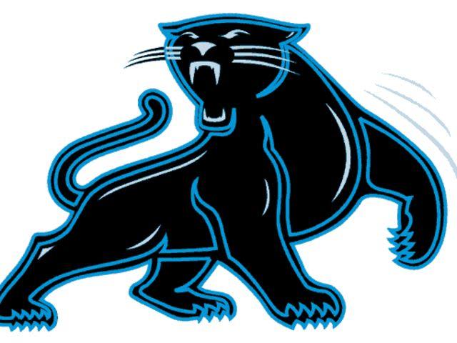 Black panther logo quiz