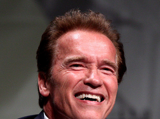 Hollywood actor and politician Arnold Schwarzenegger was born in which European country?