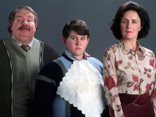 What school did the Dursley's say they sent Harry to?