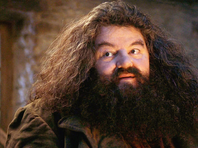 What crime was Hagrid committed of in his time at Hogwarts?