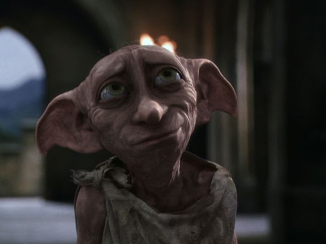 What was the name of the female elf Dobby liked?