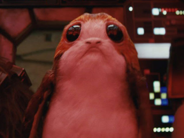 "This little guy makes his debut in ""The Last Jedi"". What is he?"