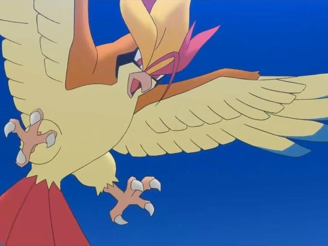Pidgey's final evolution is Pidgeot!