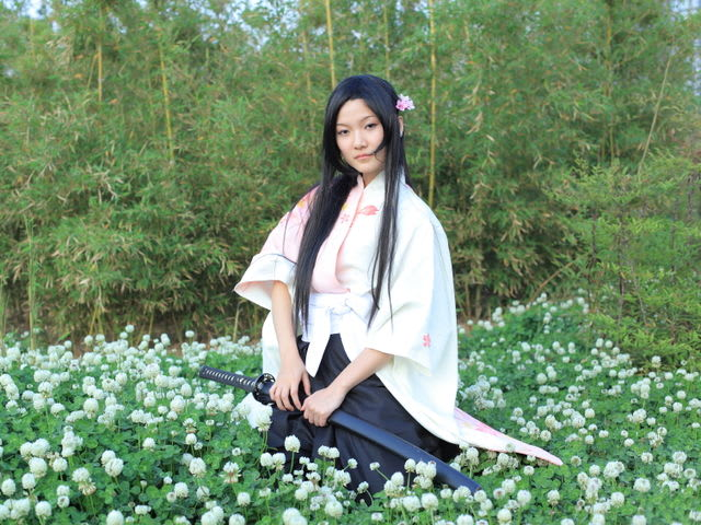 compare the heian japan kamakura shogunate pdf