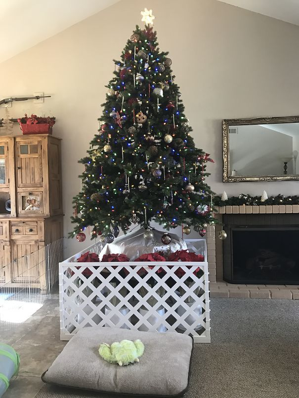33 Genius Christmas Tree Hacks For Pet Owners Playbuzz