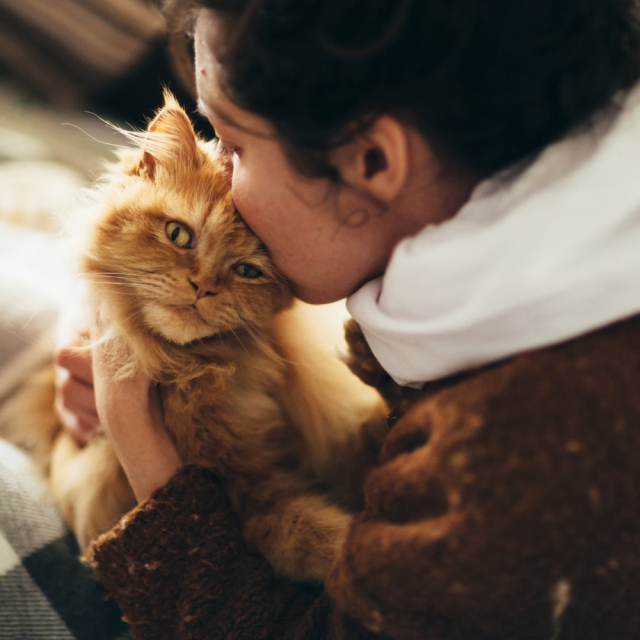 I'm a cat person!