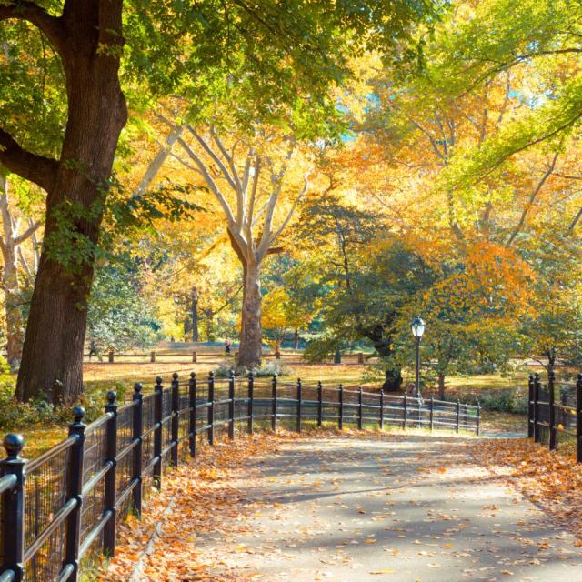Un parque lleno de naturaleza.