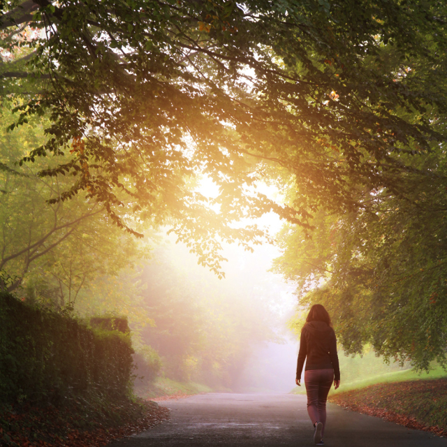 Take a peaceful walk near home