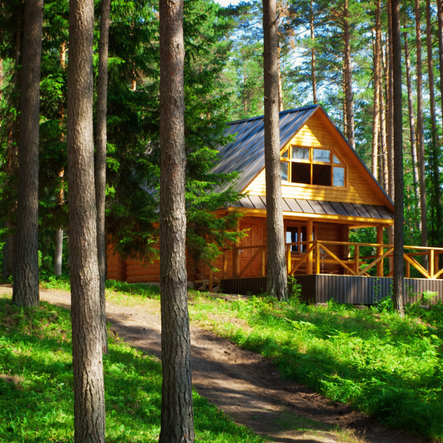 A cozy cabin in the woods!