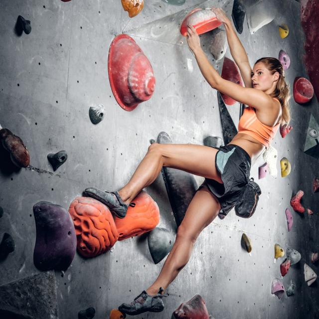 Rock Climbing Arena