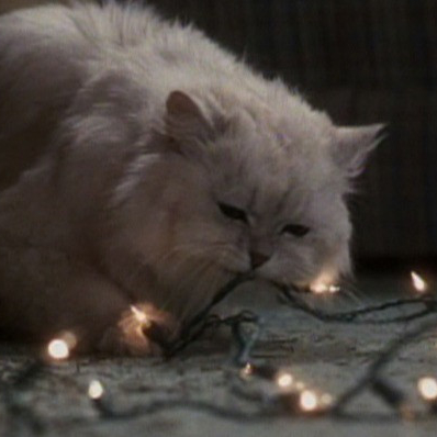 The Cat Gets Fried in Christmas Vacation