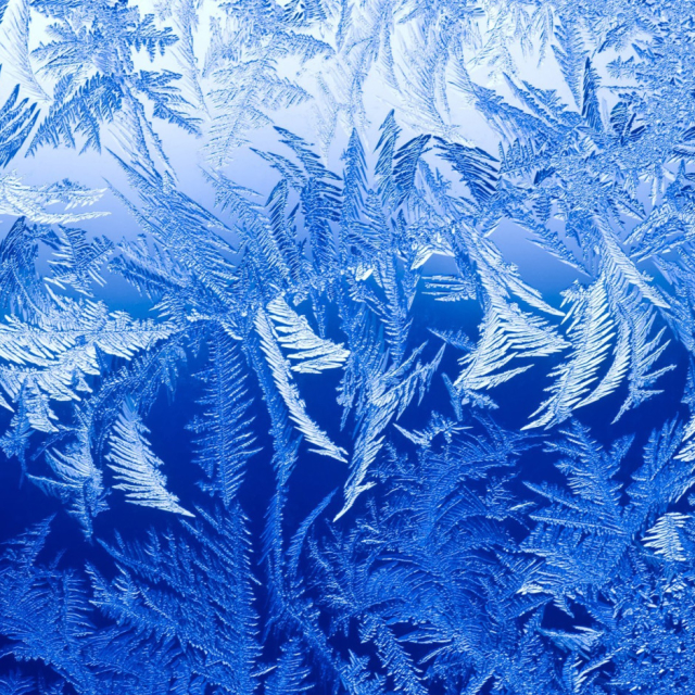 Frost: symbol of clear thinking and rational life choices
