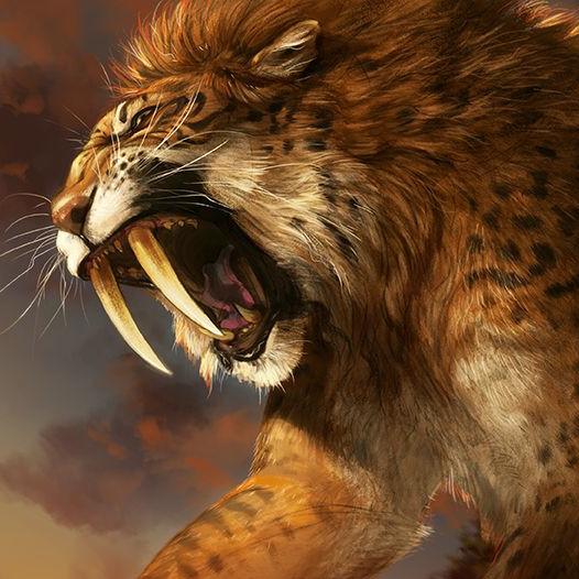 Sabre Lion