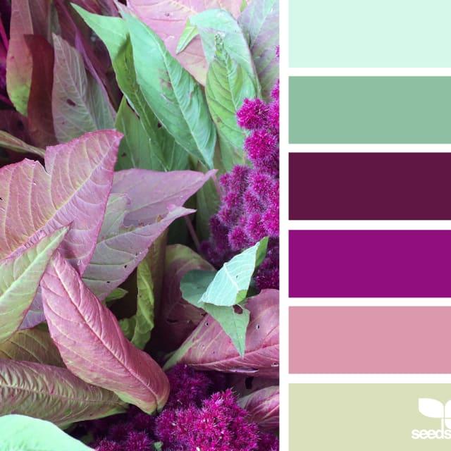 Bold/rich colours