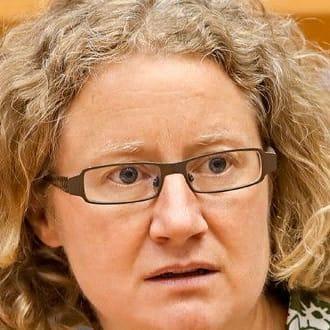 Sargentinit - és el kell ítélni a magyar kormányt