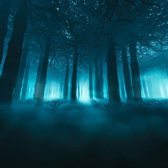 Creepy woods and haunted houses