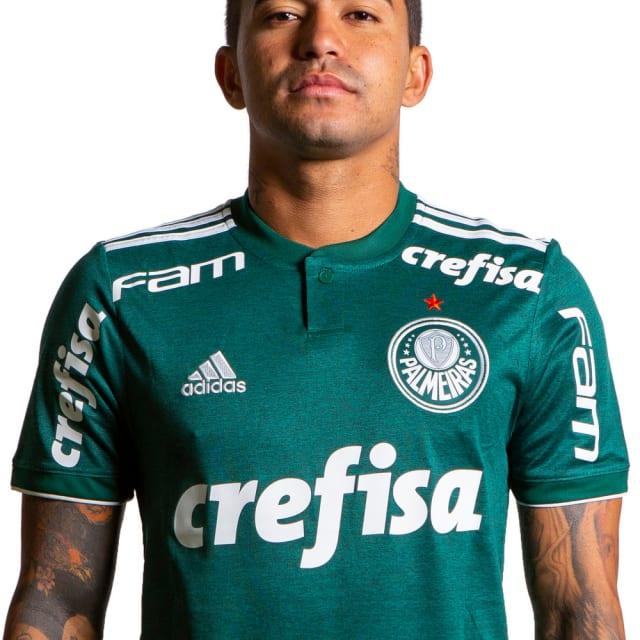Dudu (Palmeiras)