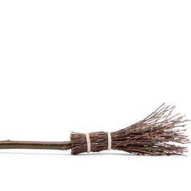 My Trusty Besom, of course!