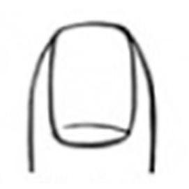 Vertical long fingernails
