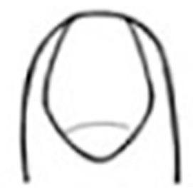 Sword-shaped fingernails