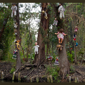Forest of Dolls (Mexico)