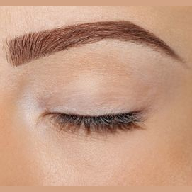 eyebrow powder/pencil