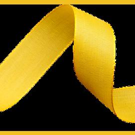 A hair ribbon