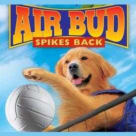 "Bud in ""Air Bud Spikes Back"""