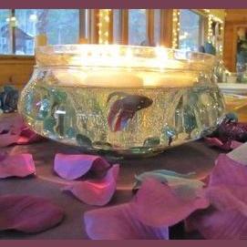 Fishbowls