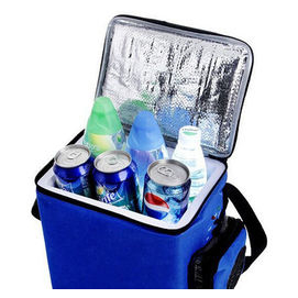 A FULL MINI COOLER BAG