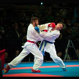 Karate/martial arts