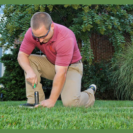 Helping Flowers, Shrubs, Trees and Grass Thrive