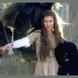 Princess Leia Naberrie Amidala Skywalker