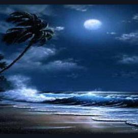 Walk on a moonlit beach