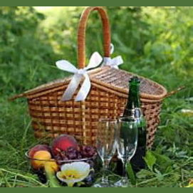 An intimate picnic