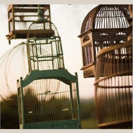 An antique bird cage