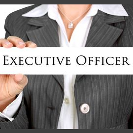 CEO / Executive