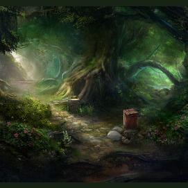 An enchanted woodland