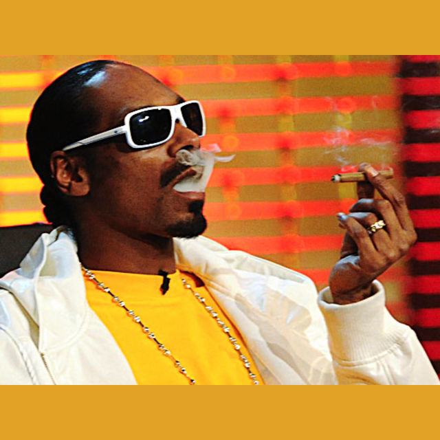 Spend an afternoon smoking weed with Snoop Dogg?