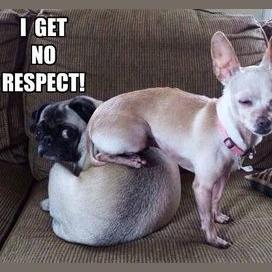 Losing respect