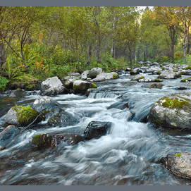 a river flowing.
