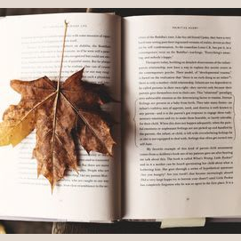 Reading a good book.