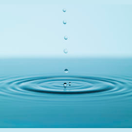 Water, it's transparent and wise