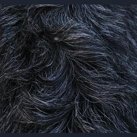 Warm, shaggy black fur